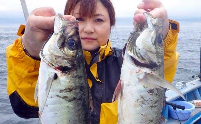 【三重・愛知】沖のエサ釣り最新釣果 45cm級「極太」アジに天然ウナギも