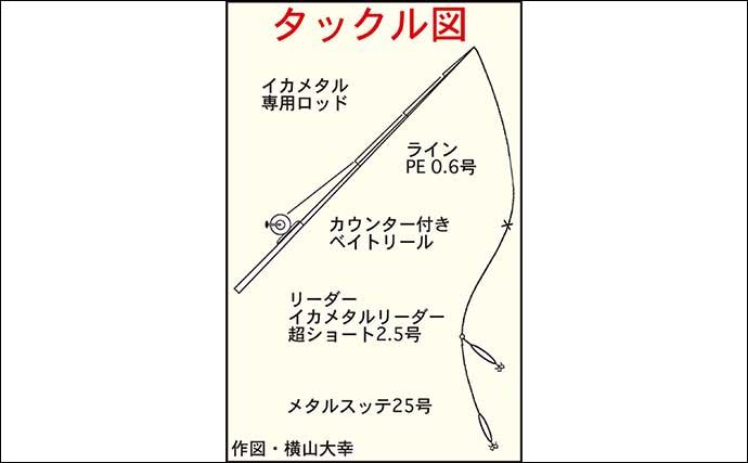 五ケ所湾でイカメタル 25cm級頭にアカイカ30匹手中【三重・南伊勢】