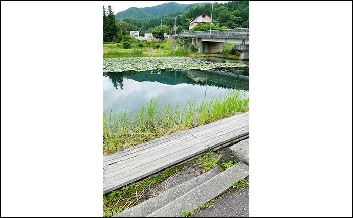 今週のヘラブナ推薦釣り場【長野県・中綱湖】
