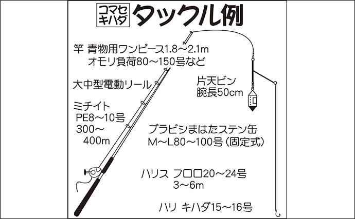 【相模湾2020】コマセマグロ/カツオが開幕 タックル・仕掛け・釣り方