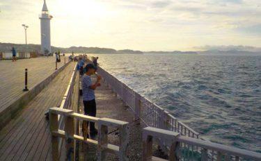 関東オススメ海釣り場:湘南大堤防 サビキや青物狙いに好適【江ノ島】