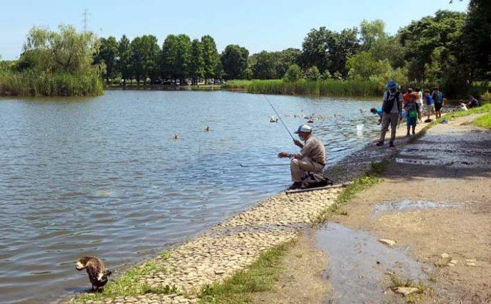 淡水『好』釣り場:都立舎人公園 遊具も充実で子連れ釣行にも【東京】