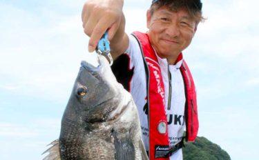カカリ釣りで52cmクロダイ手中 夏は『中切り』がオススメ【三重】