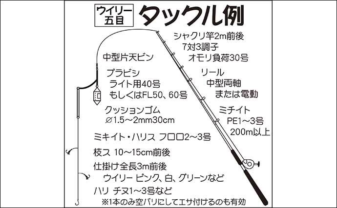 【東京湾・相模湾2020夏】簡単に多魚種狙える『ウィリー五目』入門解説