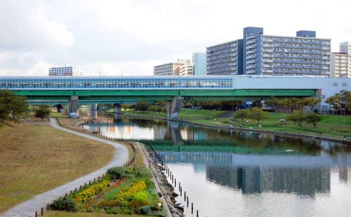 ハゼ釣り好ポイント:旧中川 エサはコンビニで調達可能【東京】