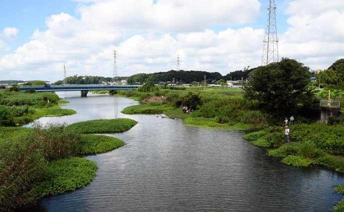 オススメ淡水小物釣り場紹介:大津川の緑豊かな『ホソ』を堪能【茨城】