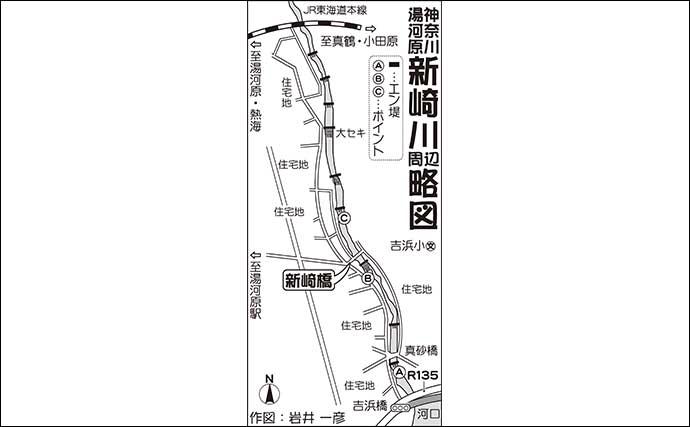 【関東2020】アユ釣り好ポイント:新崎川 簡単『エサ釣り』でOK