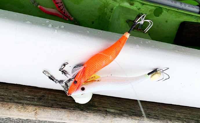 東京湾タコ船でエギ&テンヤを実釣比較 初心者に最適なのはどちら?