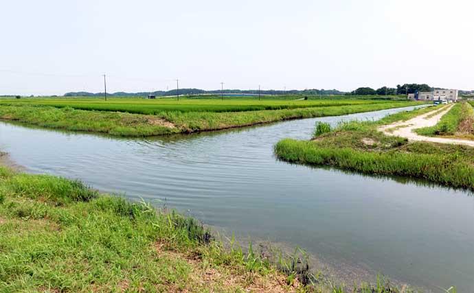 今週のヘラブナ推薦釣り場【千葉・新木水路】