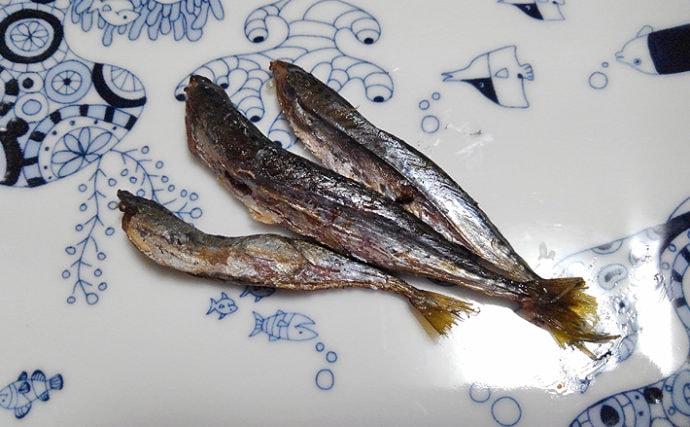 魚介で地方活性化:伝統的な保存食「梶賀のあぶり」が限界集落を救う