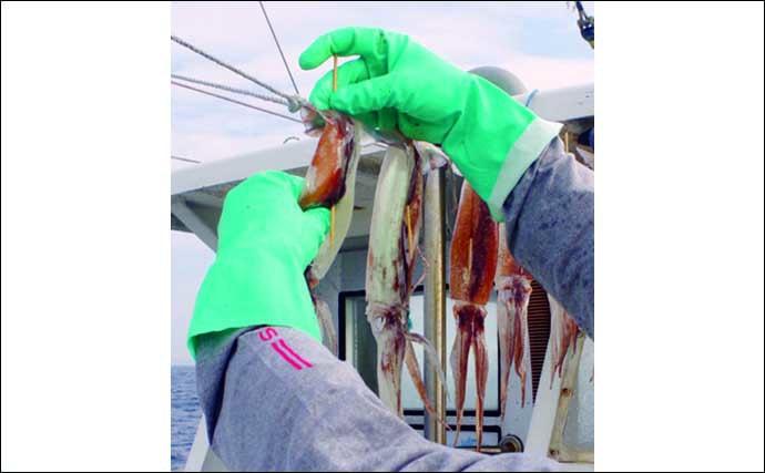 【釣果レシピ】イカの『沖干し』の作り方 釣り人の特権を味わおう