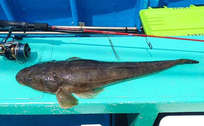 鹿島沖五目ルアーフィッシングで良型マゴチにヒラメにイナダ【久保丸】