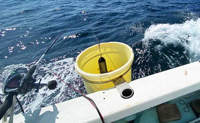 「沖のコマセ五目」釣りでオアカムロにハチビキ手中【神奈川・秀吉丸】