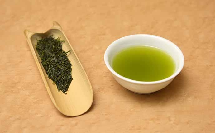金沢大学がトラフグ寄生虫駆虫の技術を開発 お茶が高級魚養殖を救う?