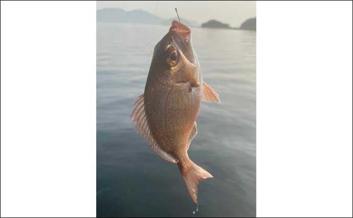 波止フカセ釣りで46cmチヌ手中 エサ取りパラダイスに苦戦【大分】