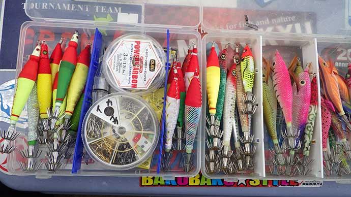 夏のケンサキイカメタルが開幕 釣果アップのためのトラブル防止策3選