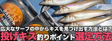 サーフでの投げ釣りにおけるポイント選出方法 フグのヒットもヒントに?