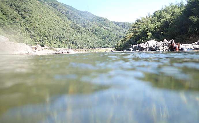 『川キャンプ』でテナガエビすくいを堪能 釣果で贅沢ご飯【有田川】