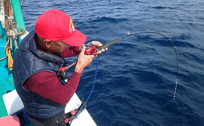 【日ノ岬沖2020】落とし込み釣り入門 ベイト付けはフリーフォールでOK