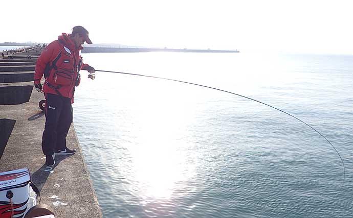 チヌフカセ釣りの『棒ウキ』&『円錐ウキ』解説 特性理解し使い分けを
