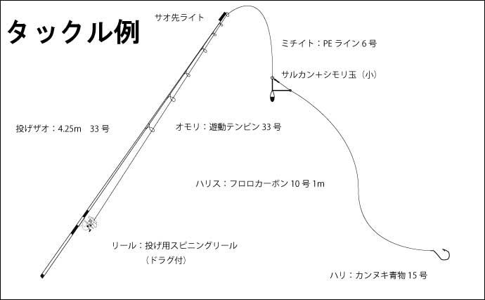 【関西2020夏】夜の投げ釣り好ターゲット3選 大型狙いがオススメ