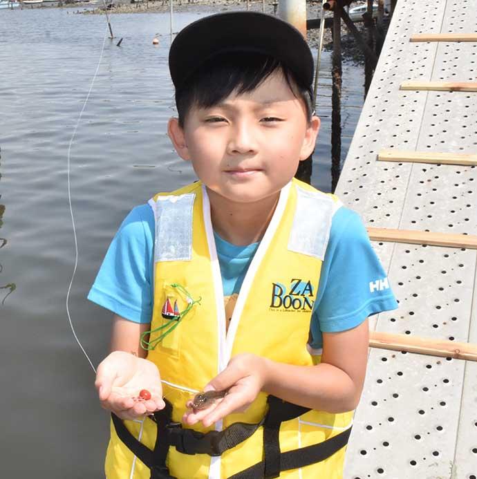 子供と一緒に「安い・近い・短時間」のハゼ&テナガエビ釣りを満喫