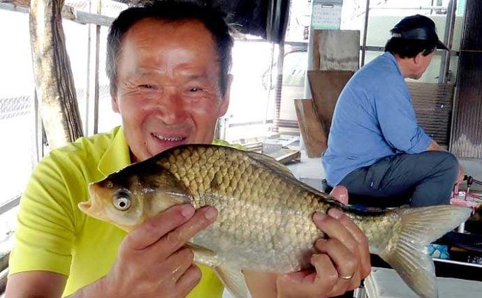 涼しい屋内釣り場で大型ヘラブナ連発 40cm超含み29尾【へら釣り西池】