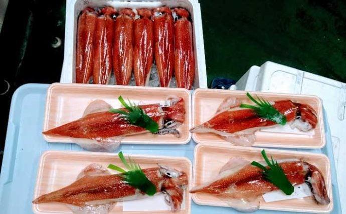 プロが教える「旬魚」の見分け方:ケンサキイカ 初夏~秋はお手頃価格