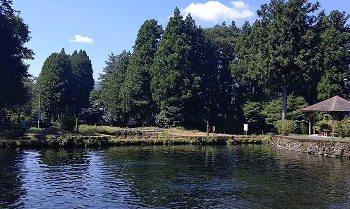 高地の管理釣り場で避暑釣行 テンカラで大型ニジマス【富士養鱒場】