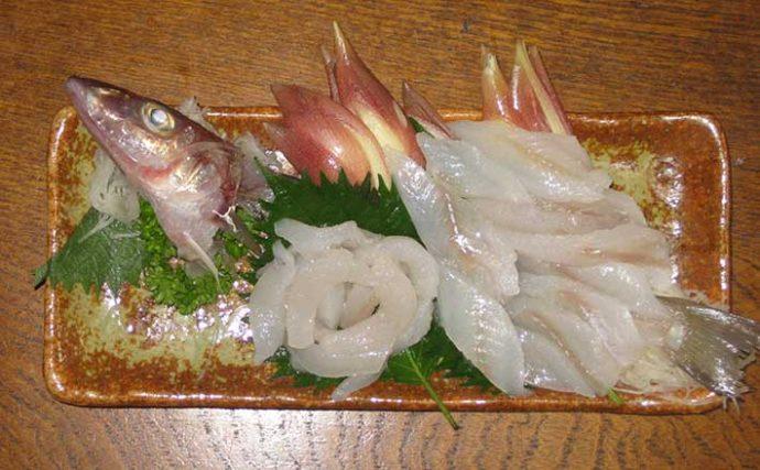 【釣果レシピ】釣り人の特権『キスの刺し身』 下処理~盛り付けまで