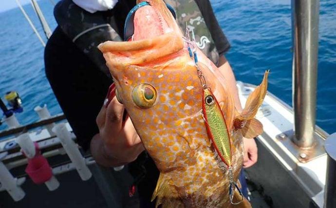 SLJゲームで40cmアコウのほか多魚種釣果に満足【京都・ワープゾーン】