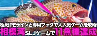 相模湾SLJゲームで「11魚種」達成 極細PEライン&専用フックで攻略