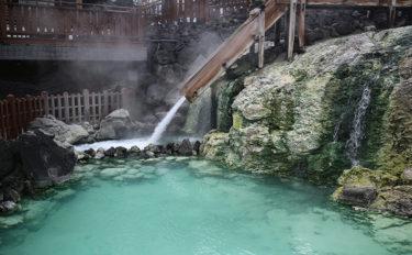 「イデユコゴメ」の海水培養に成功 温泉で育つ「藻」が養殖事業に貢献?