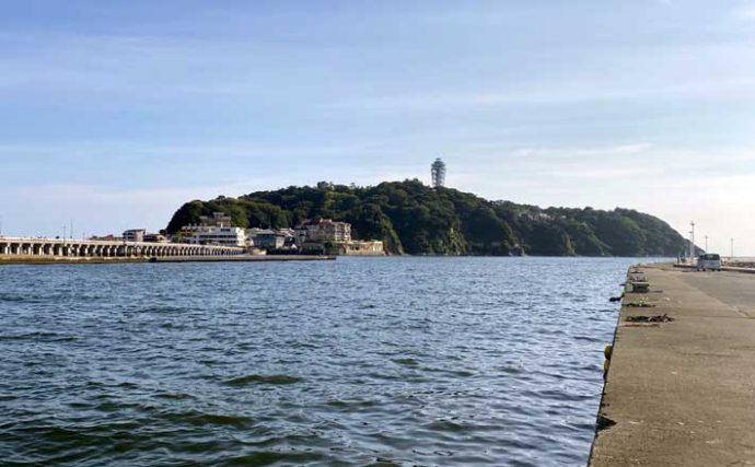 【湘南&西湘エリア2020】釣り船「出船港」4選 観光にもオススメ