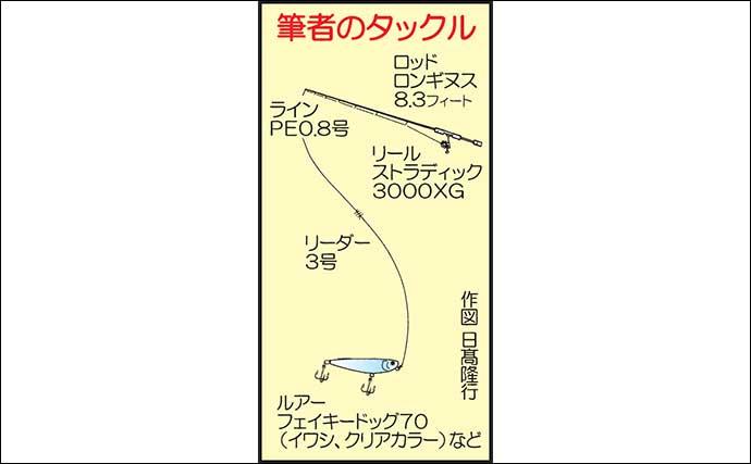 沖磯『トップシーバスゲーム』で60cm級強烈バイト堪能【熊本・天草】