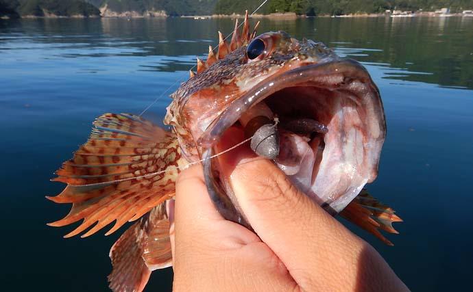 SUPでロックゲーム満喫 リグサイズが魚体の大きさに比例?【三重】