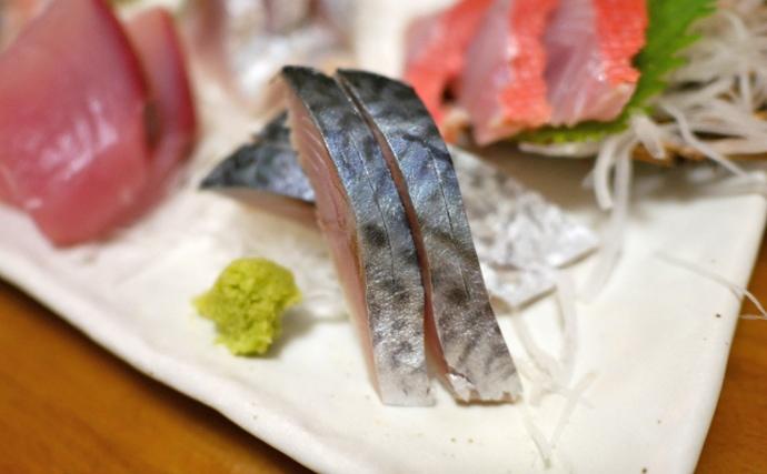 東京湾「トロサバ」は秋が旬 正体は「マサバ」と「ゴマサバ」どっち?