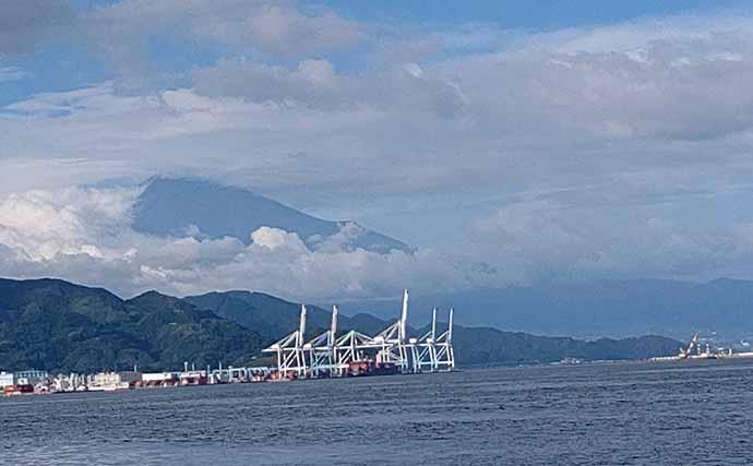 『フジツボ型ルアー』で岸壁クロダイゲーム 47cm頭に3匹手中【清水港】