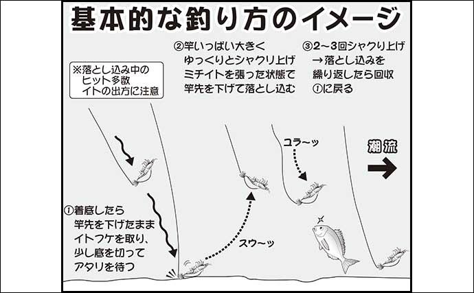 【茨城2020秋】テンヤマダイ釣り入門 タックル~釣り方まで解説