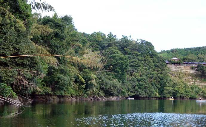 今週のヘラブナ推薦釣り場【千葉県・亀山湖】