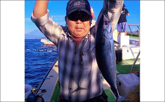 相模湾コマセカツオ釣り 食い渋るも本命3kg超手中【まごうの丸】