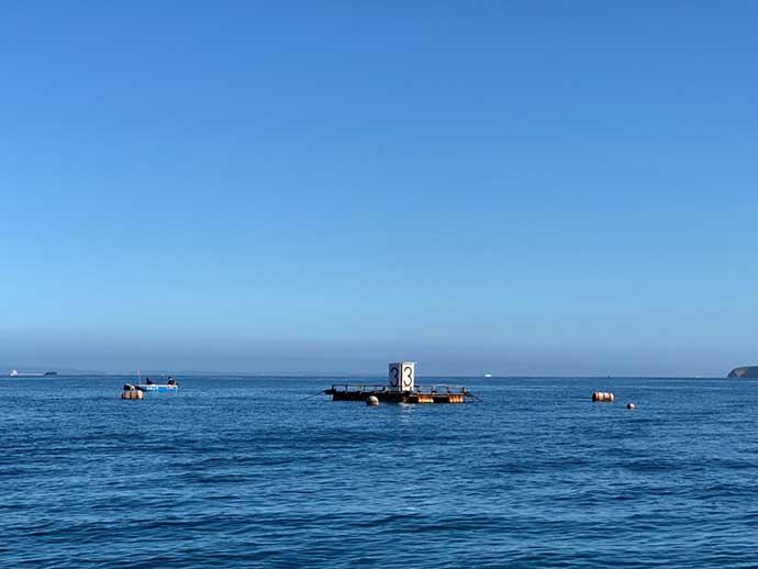 カカリ釣りで40cmショゴ 関東では珍しい筏&カセを堪能【千葉県】