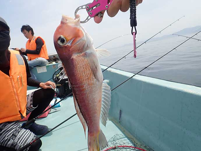 【京都2020】宮津周辺レンタルボート釣りのススメ 特徴や注意点を解説
