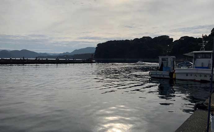 釣り初心者が『海上釣堀まるや』で青物をキャッチする方法5選【静岡】
