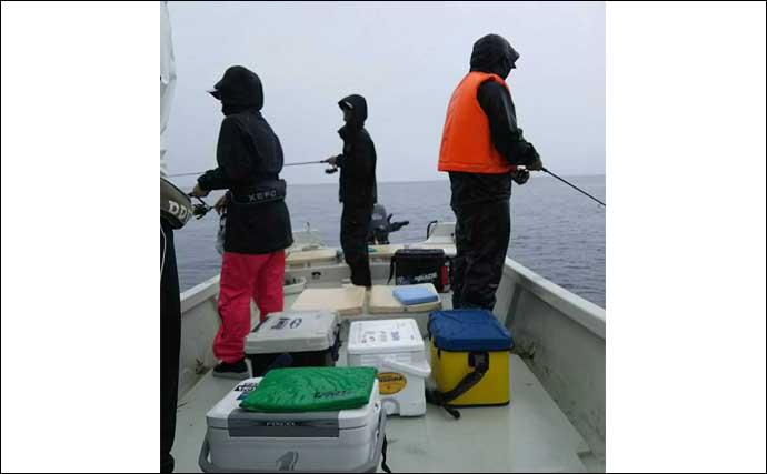 アオリイカ釣り入門は『ボートエギング』が最適 2つの大きなワケとは?
