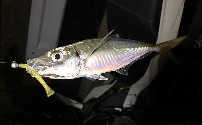 ライトブリームゲーム攻略法:釣果に直結する『釣行前ルーティーン』