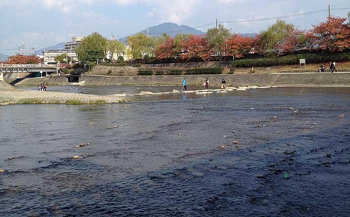 【大阪湾2020】アジングが不調なワケ 40年に一度のハードモード到来?