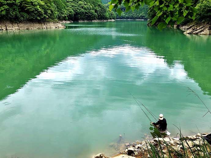 ヘラブナ釣り初心者入門 マッシュベース両ダンゴで大型狙い(第11回)