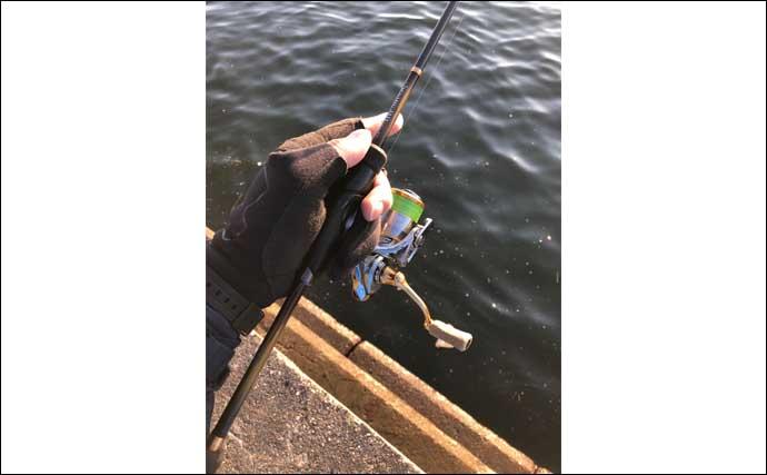 今さら聞けないアジングのキホン:釣果に差が出る『ロッドワーク』