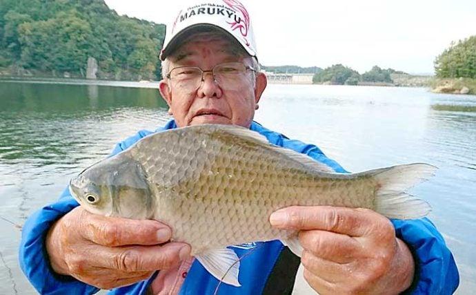 ダム湖で秋のヘラブナ釣り満喫 もじりに合わせて30匹超手中【布目ダム】